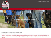Super Puppy Education website screenshot
