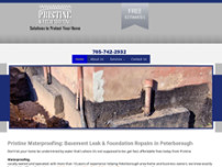 Pristine Waterproofing website screenshot