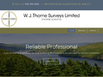 Thorne W J Surveys Limited website screenshot