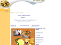 Hans Schäfer website screenshot