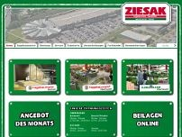 Ziesak GmbH & Co. KG website screenshot