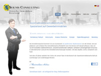 SOLMS CONSULTING Gewerbe-Immobilien-Beratung website screenshot