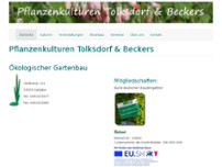 Pflanzenkulturen Tolksdorf undBeckes website screenshot
