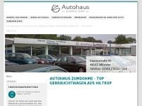 Access Fahrzeugtechnik Ltd. website screenshot