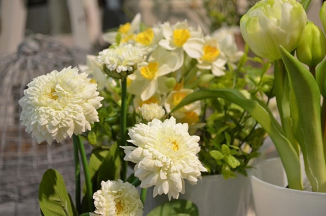 Deko Florale Outlet Blumen In L Neburg Boecklerstra E 20a