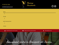 Flamingo Amusements website screenshot