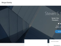 Steven S Greenberg - Morgan Stanley website screenshot